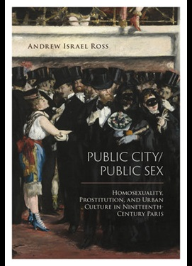 andrew ross book cover public city public sex