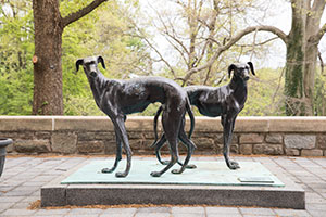 Two greyhound statues standing outside of the Fitness and Aquatic Center