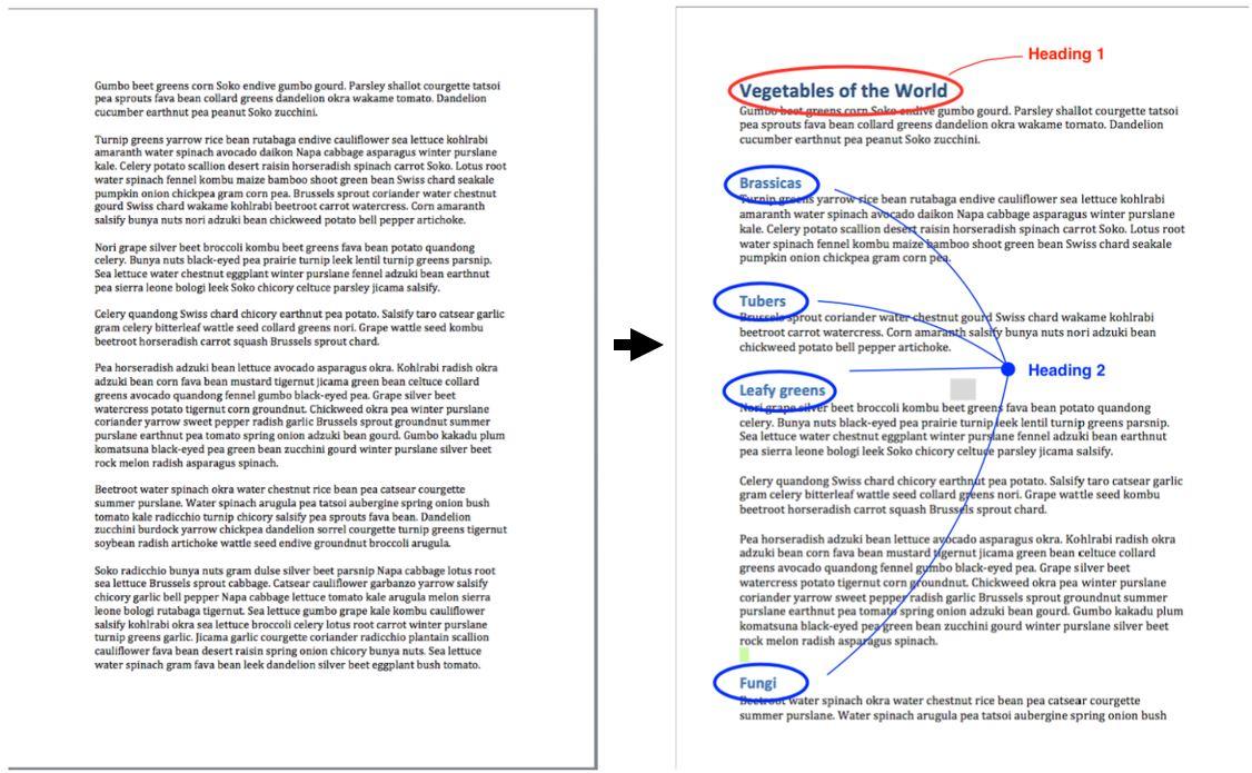 Ielts argument essay writing