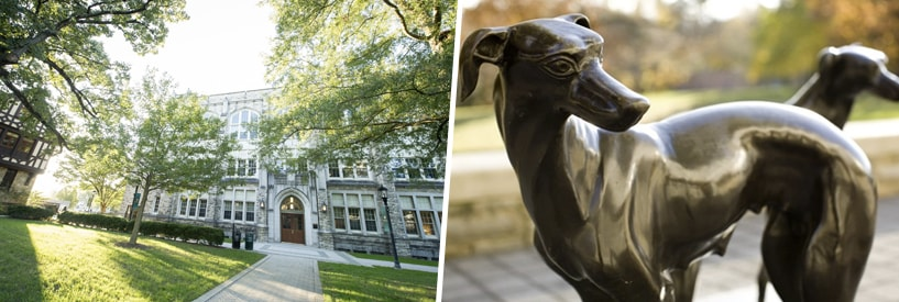 Jenkins hall in the sunlight; greyhound statue