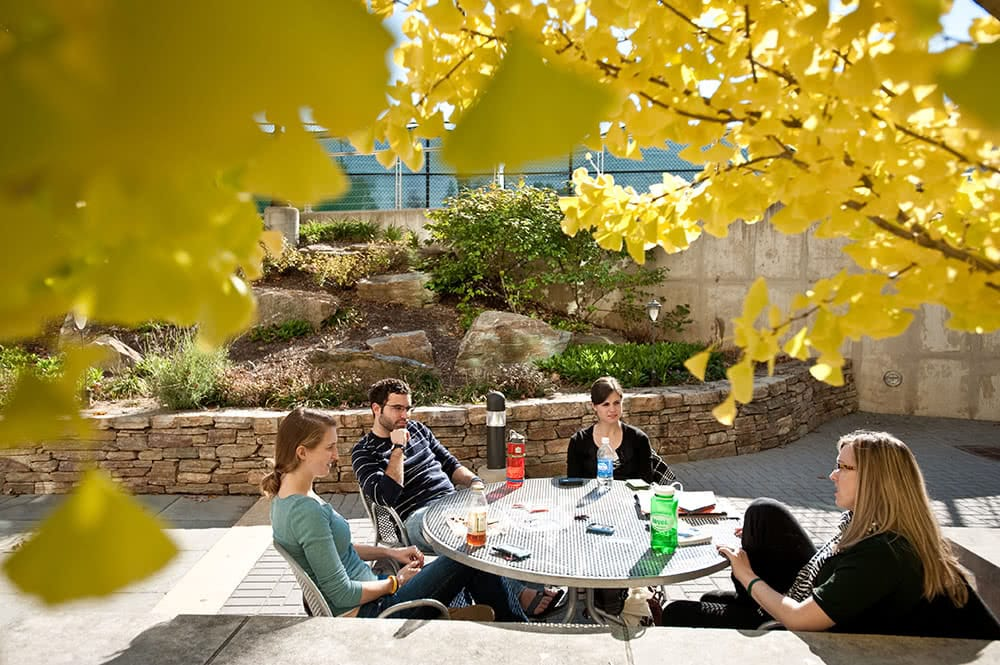 Students sitting and eating around a table outdoors, with yellow fall foliage hanging overhead