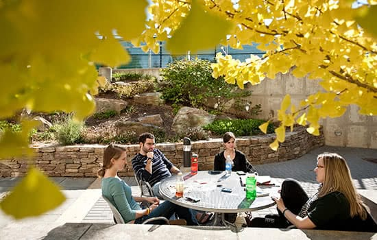 Students sitting around a table with fall leaves in the foreground